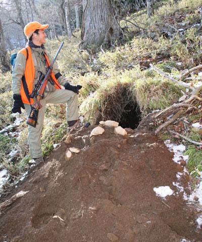 初冬の有害捕獲中に発見した、作りかけのヒグマ冬眠穴。穴の入り口はサッカーボール大。ヒグマによってかき出されたばかりの土砂が手前に堆積していました。