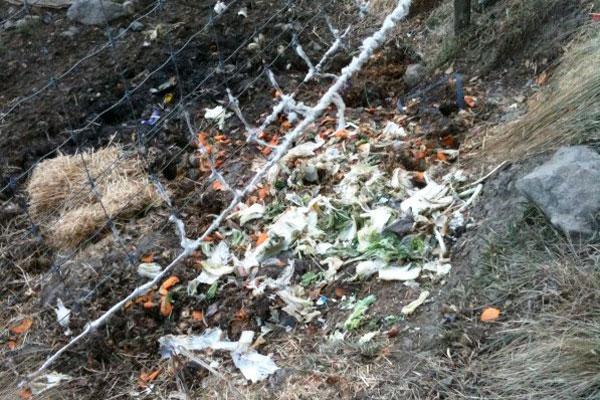 こうした屋外に投棄されたゴミはヒグマを誘引します